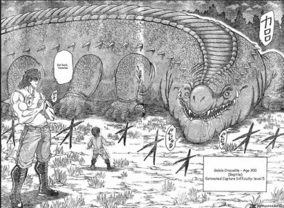 toriko croc